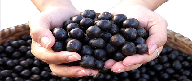 acai_berry_benefits_side_effects