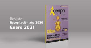 Aenpa - Revista Enero 2021